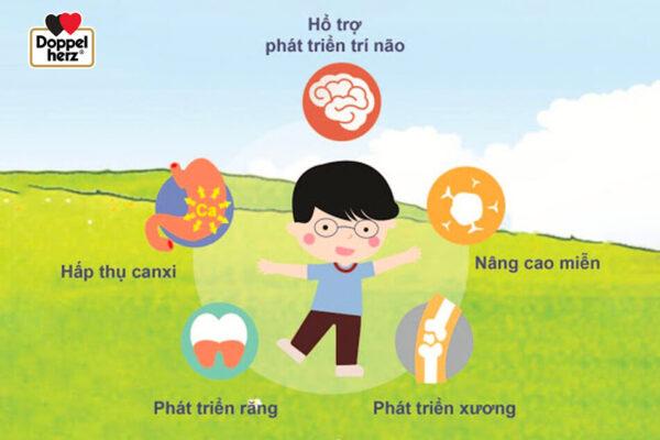 Vitamin D3 có vai trò quan trọng trong sự phát triển xương và sự hấp thụ canxi ở trẻ
