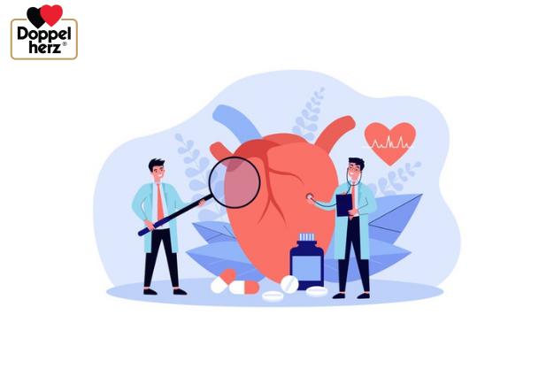 Hormone estrogen suy giảm cũng làm tăng nguy cơ mắc các bệnh lý về tim mạch nên cần lưu ý khi bổ sung Isoflavone